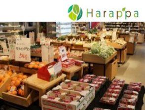 合同会社Harappa(はらっぱ)